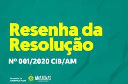 RESOLUÇÕES DA CIB/AM 2020