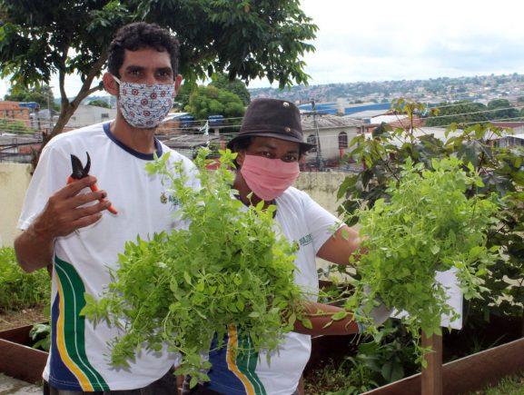 Horta do Centro de Convivência Teonízia Lobo, coordenado pela Seas, fortalece vínculos com a comunidade